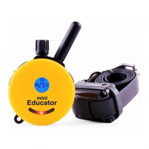 Educator E-Collar Dog Training Collar